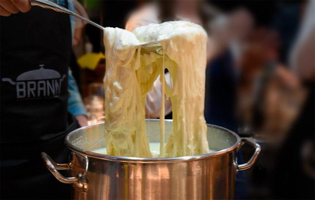 taller quesos mozzarella