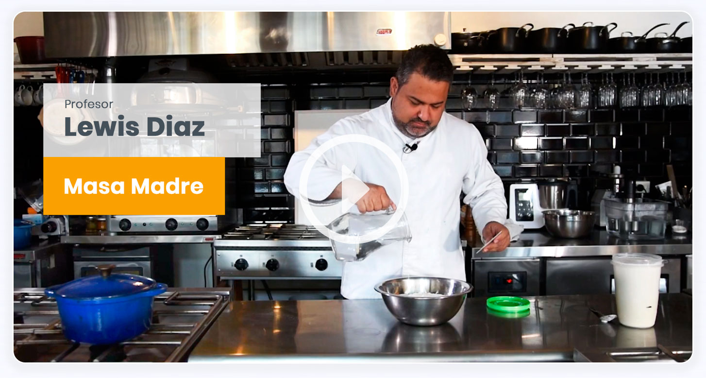 video curso cocina online